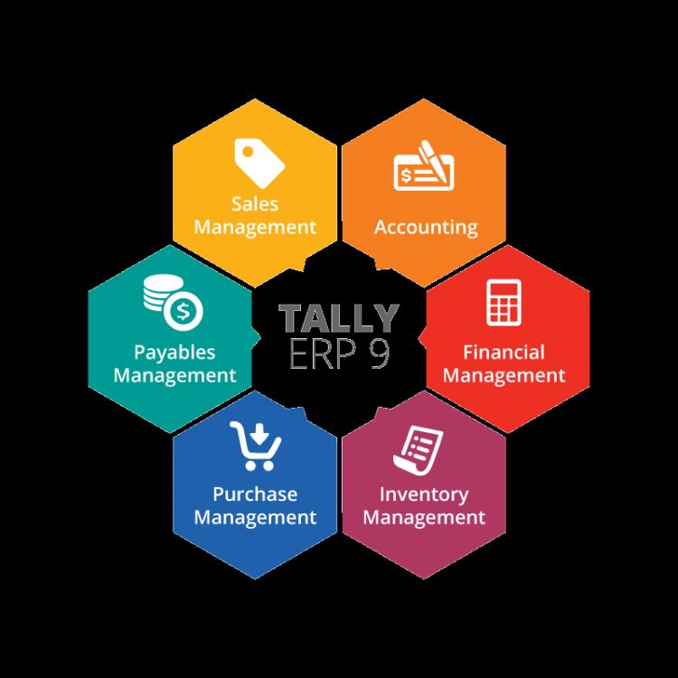 certificate in expert tally erp  9 with gst and payroll